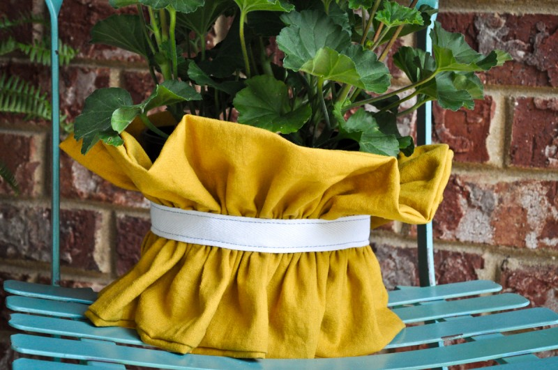 ruffle plant cover-4