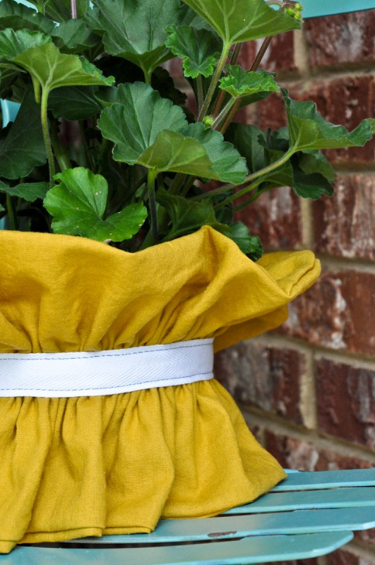 ruffle plant cover-6