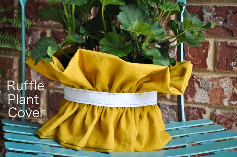 ruffle-plant-cover-4